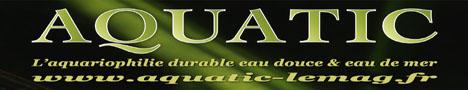 nouvelle revue aquariophile en partenariats avec bestoffres.eu
